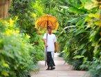 Тур в отель Ayodya Resort Bali 5* 24