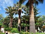 Тур в отель Grecotel Creta Palace 5* 9