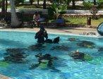 Тур в отель Reef & Beach 3* 5