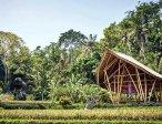 Тур в отель Four Seasons Resort Bali At Sayan 5* 38