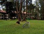 Тур в отель Dusit Thani Laguna 5* 41