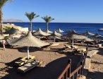 Тур в отель Hilton Sharks Bay 4* 29