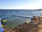 Тур в отель Hilton Sharks Bay 4* 25