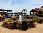 Тур в отель Cactus Beach 4* 26