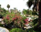 Тур в отель Le Meridien Al Aqah 5* 8