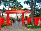 Тур в отель Grand Yasizi Club Turban 5* 8