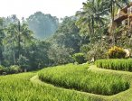 Тур в отель Four Seasons Resort Bali At Sayan 5* 44