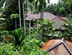 Тур в отель Dusit Thani Laguna 5* 50