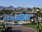 Тур в отель Hilton Sharks Bay 4* 19