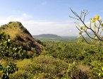 Шри-Ланка 9