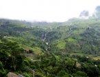 Шри-Ланка 41