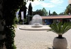 Slovenska Plaza 3* (Будва) 15