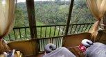 Jungle Retreat by Kupu-Kupu Barong 4* (Убуд) 2