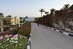 AA Grand Oasis Resort 4* (Шарм-Эль-Шейх) 16