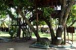 Eden Resort 5* (Берувелла) 10