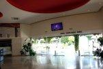 Slovenska Plaza 3* (Будва) 14