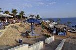 AA Grand Oasis Resort 4* (Шарм-Эль-Шейх) 19