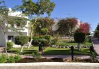 Swiss Inn Resort Dahab 4* (Дахаб) 5