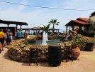 Cactus Beach 4* (Сталида) 15