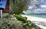Coral Island Resort 3* (Пхукет) 5