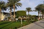 AA Grand Oasis Resort 4* (Шарм-Эль-Шейх) 18