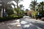 Sultan Gardens 5* (Шарм-эль-Шейх) 4