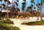 Iberostar Punta Cana 5* (Пунта-Кана) 6