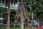 Pattaya Park 3* (Паттайя) 24