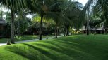 Terracotta Resort 4* (Фантьет) 7