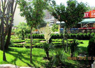 Mena Palace 4* (Солнечный Берег) 3