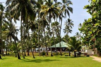 Villa Ocean View 4* (Ваддува) 9