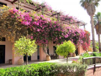 Candia Park Village 4* (Агиос Николаос) 32