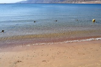 Ibis Styles Dahab Lagoon 4* (Дахаб) 10