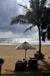 Pandanus Beach 4* (Индурува) 5