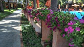 Terracotta Resort 4* (Фантьет) 23
