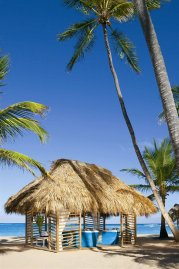 Dreams Punta Cana Resort & SPA 5* (Пунта-Кана) 26