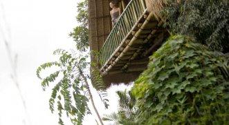 Jungle Retreat by Kupu-Kupu Barong 4* (Убуд) 18