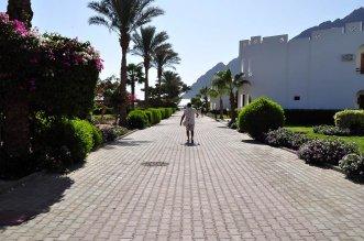 Happy Life Village Dahab 4* (Дахаб) 13