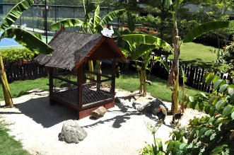 Santiburi Golf Resort & SPA 5* (Самуи) 18
