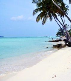 Arena Beach 4* (Мальдивы) 1