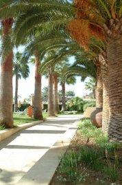 Palm Beach 4* (Ларнака) 4