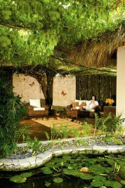 Dreams Punta Cana Resort & SPA 5* (Пунта-Кана) 33