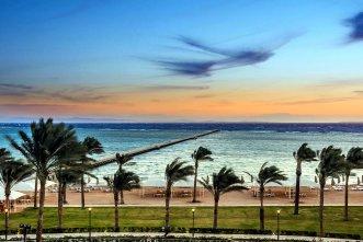 Rixos Seagate Sharm 5* (Шарм-Эль-Шейх) 3
