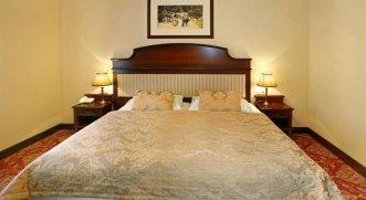 Hvezda Spa Resort 4* (Марианске Лазне) 4