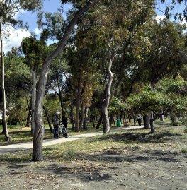 Park Beach 4* (Лимассол) 11