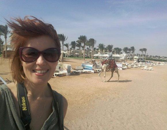 Отчет о рекламном туре по Египту (2016)