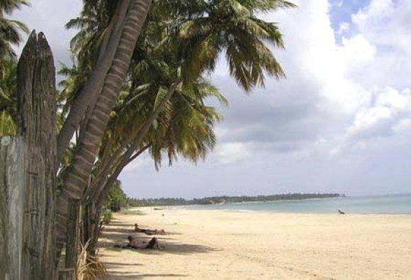 На каком курорте лучше отдыхать летом на Шри-Ланке? Отдых на Шри-Ланке: Тринкомали.