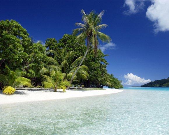 Бескрайние пляжи Гоа
