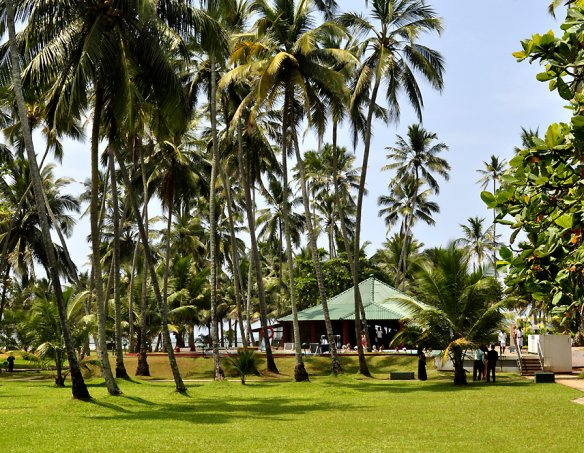 Тур в отель Villa Ocean View 3*+ 20