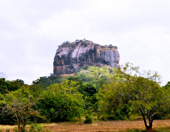 Йога-тур в Шри-Ланку 2018 7